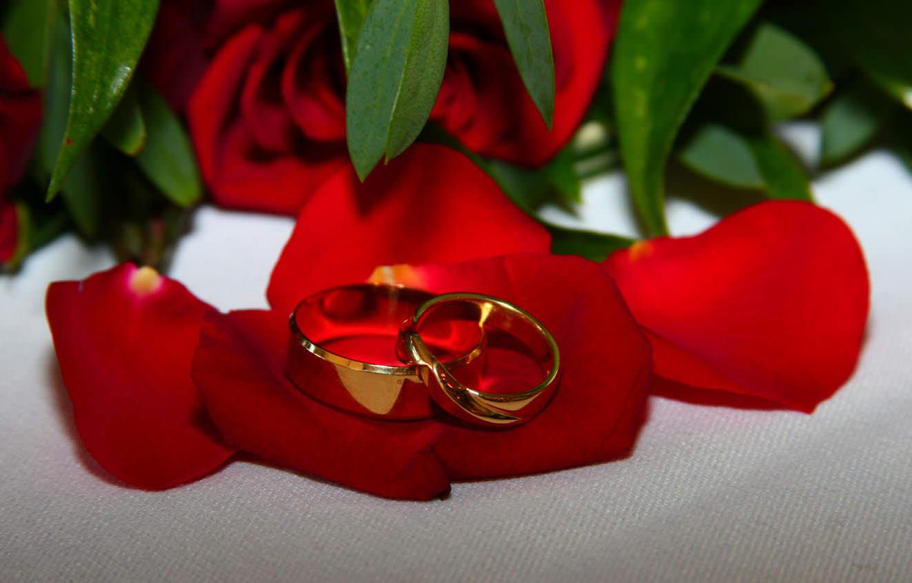 Золотые свадьбы фото юбиляры