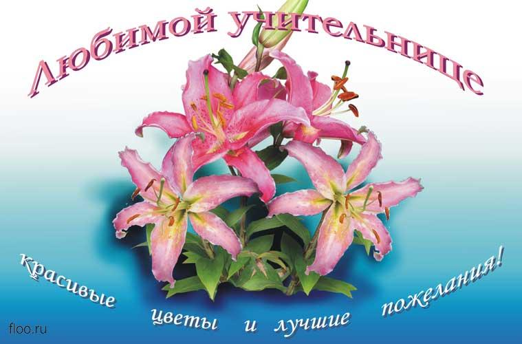 Поздравления день рождения учительнице
