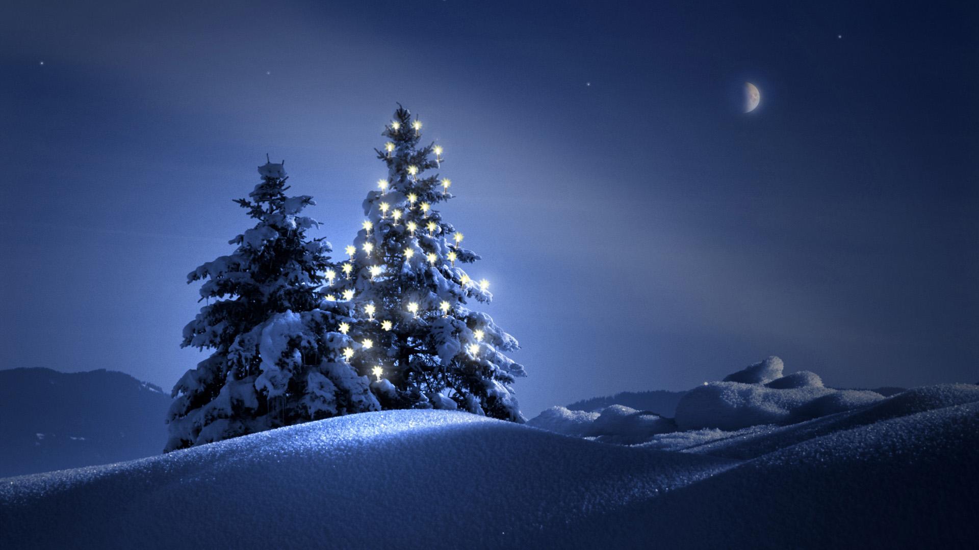 ель огни снег  № 3330388 без смс