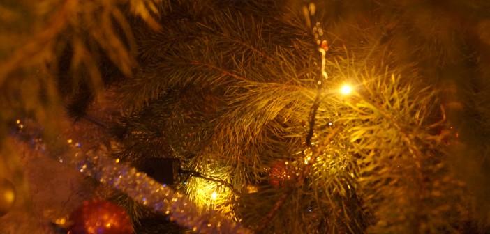 Подарок мальчику на Новый год – новогодний интерактив, Новый год - 2019 новые фото