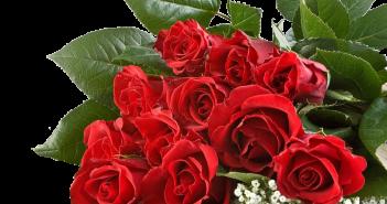 Какие цветы подарить маме на 50 лет