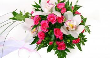 К чему дарят орхидеи