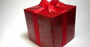 Лучший подарок от девушки