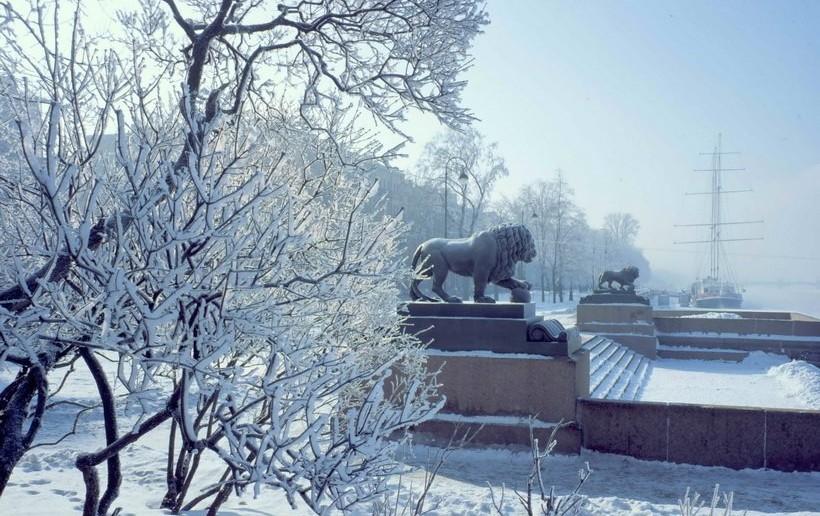 Новый год в Санкт-Петербурге 2016
