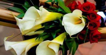Какие цветы подарить на 30 лет девушке