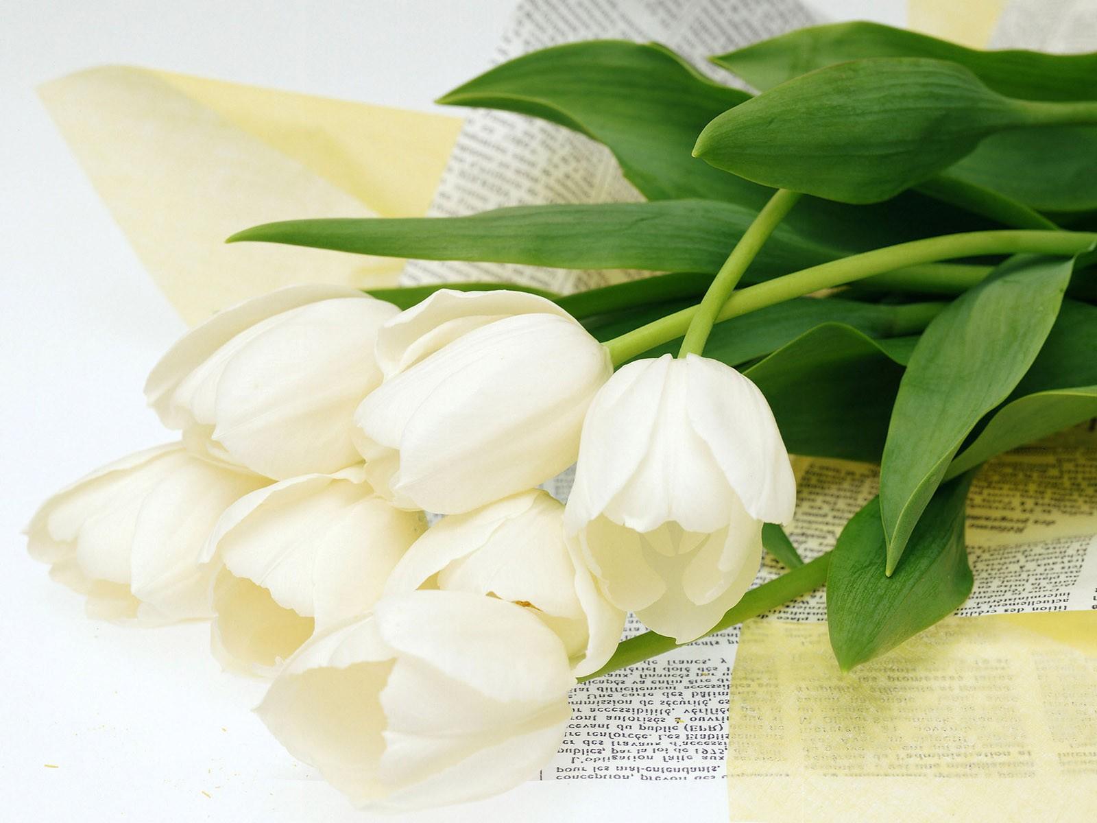 Кому и когда дарят белые лилии?