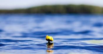 Отдых на Браславских озерах цены 2015