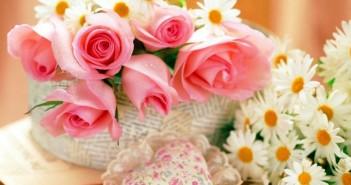 Какие цветы подарить женщине на 55 лет