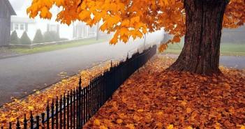 13 ноября - какие праздники сегодня, именины, события истории, дни рождения