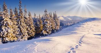20 декабря - какие праздники сегодня, именины, события истории, дни рождения