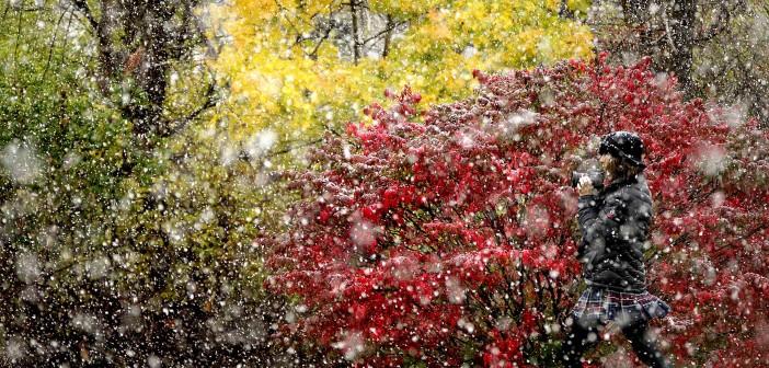20 ноября - какие праздники сегодня, именины, события истории, дни рождения