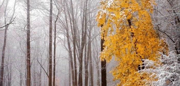 21 ноября - какие праздники сегодня, именины, события истории, дни рождения