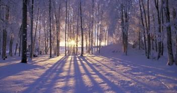 22 декабря - какие праздники сегодня, именины, события истории, дни рождения