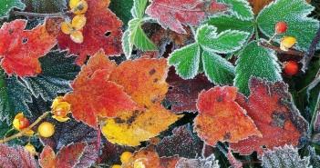 23 ноября - какие праздники сегодня, именины, события истории, дни рождения