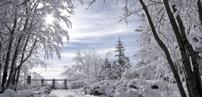 25 декабря - какие праздники сегодня, именины, события истории, дни рождения