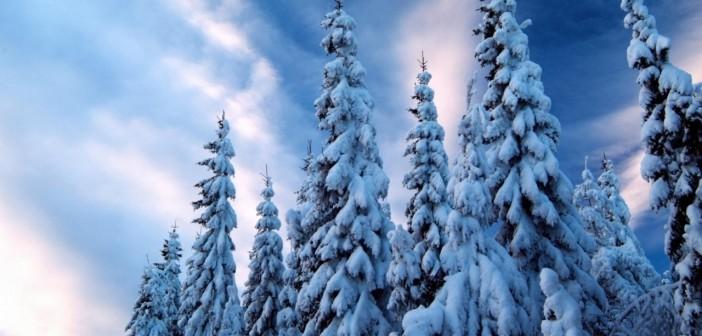 26 декабря - какие праздники сегодня, именины, события истории, дни рождения