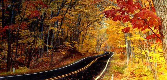27 ноября - какие праздники сегодня, именины, события истории, дни рождения