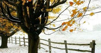 4 декабря - какие праздники сегодня, именины, события истории, дни рождения
