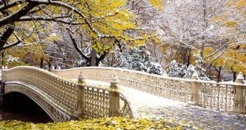 5 ноября - какие праздники сегодня, именины, события истории, дни рождения