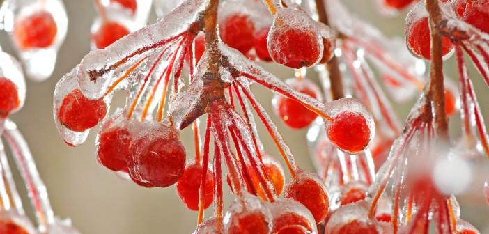 6 декабря - какие праздники сегодня, именины, события истории, дни рождения