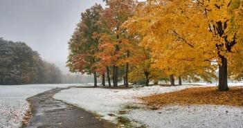 8 ноября - какие праздники сегодня, именины, события истории, дни рождения