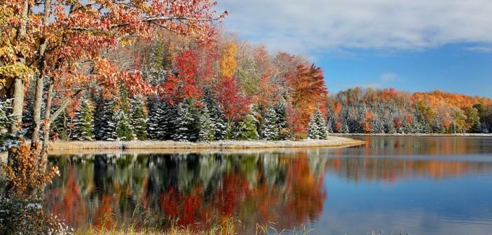 Выходные и праздничные дни в ноябре