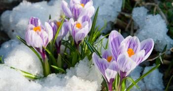 11 марта - какие праздники сегодня, именины, события истории, дни рождения