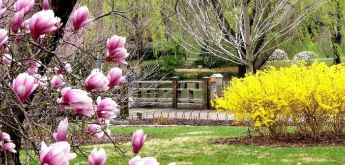 14 апреля - какие праздники сегодня, именины, события истории, дни рождения