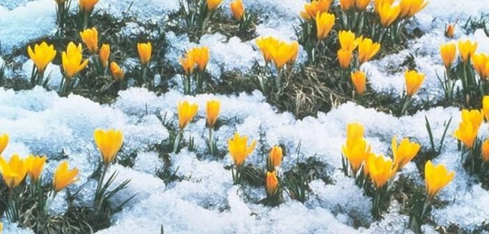 14 марта - какие праздники сегодня, именины, события истории, дни рождения