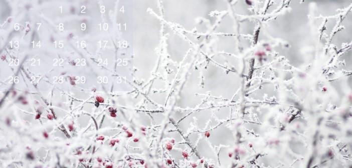 14 января - какие праздники сегодня, именины, события истории, дни рождения