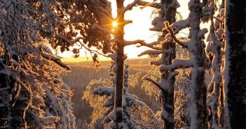 17 января - какие праздники сегодня, именины, события истории, дни рождения