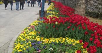 20 апреля - какие праздники сегодня, именины, события истории, дни рождения