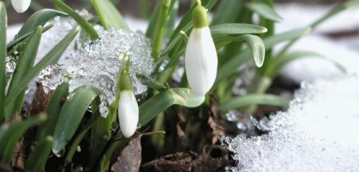 20 марта - какие праздники сегодня, именины, события истории, дни рождения