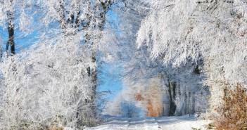 20 января - какие праздники сегодня, именины, события истории, дни рождения