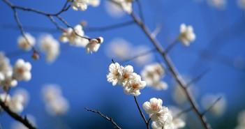 22 марта - какие праздники сегодня, именины, события истории, дни рождения
