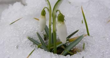23 марта - какие праздники сегодня, именины, события истории, дни рождения