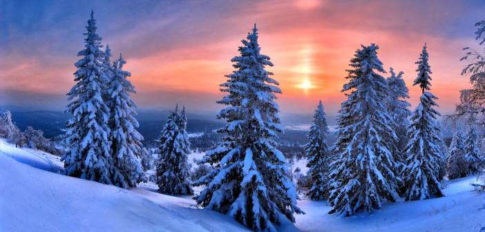 25 февраля - какие праздники сегодня, именины, события истории, дни рождения