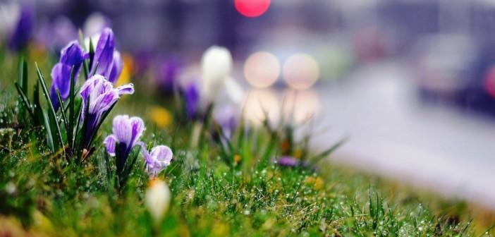 25 марта - какие праздники сегодня, именины, события истории, дни рождения