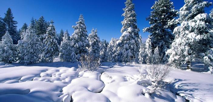26 января - какие праздники сегодня, именины, события истории, дни рождения