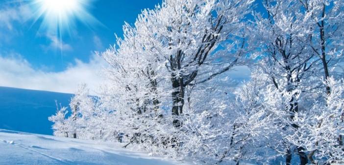 28 января - какие праздники сегодня, именины, события истории, дни рождения