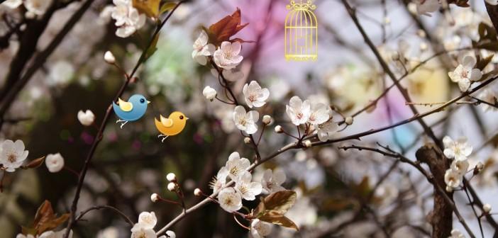 29 апреля - какие праздники сегодня, именины, события истории, дни рождения