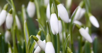 29 марта - какие праздники сегодня, именины, события истории, дни рождения