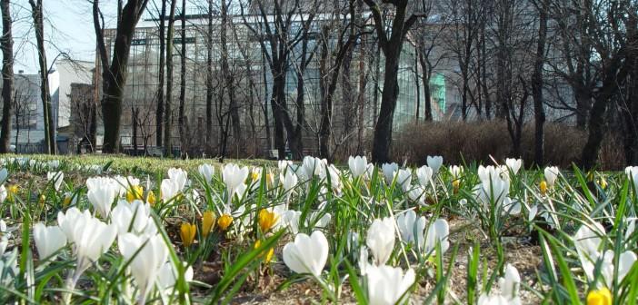 3 апреля - какие праздники сегодня, именины, события истории, дни рождения