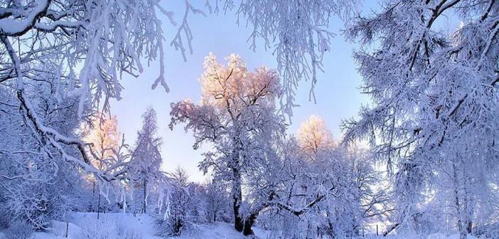 4 февраля - какие праздники сегодня, именины, события истории, дни рождения