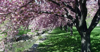 9 апреля - какие праздники сегодня, именины, события истории, дни рождения