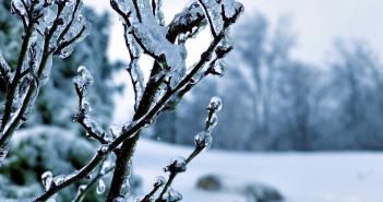 9 февраля - какие праздники сегодня, именины, события истории, дни рождения