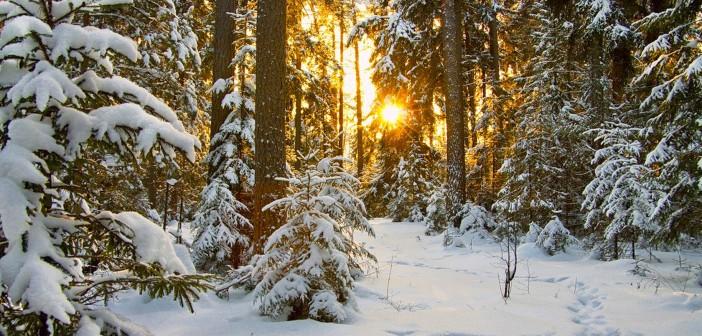 9 января - какие праздники сегодня, именины, события истории, дни рождения