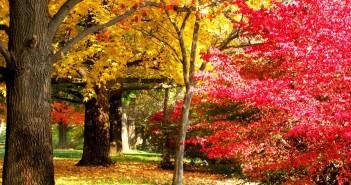 1 октября - какие праздники сегодня, именины, события истории, дни рождения