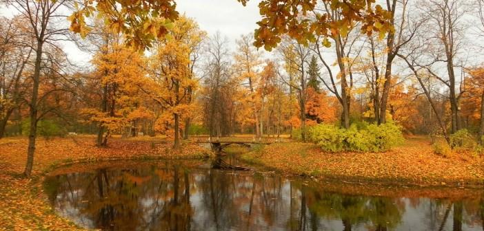 11 октября - какие праздники сегодня, именины, события истории, дни рождения