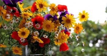 20 июня - какие праздники сегодня, именины, события истории, дни рождения